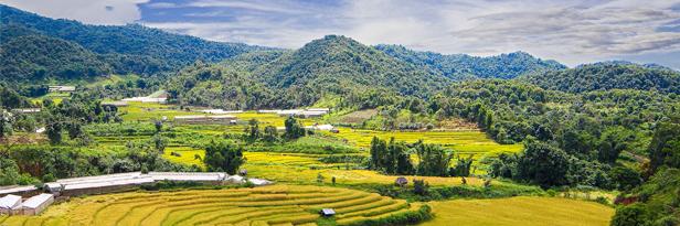 Thai-Way-of-Life-TAT